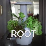 Grow with ROOT a smart device that allows you to grow plants indoors